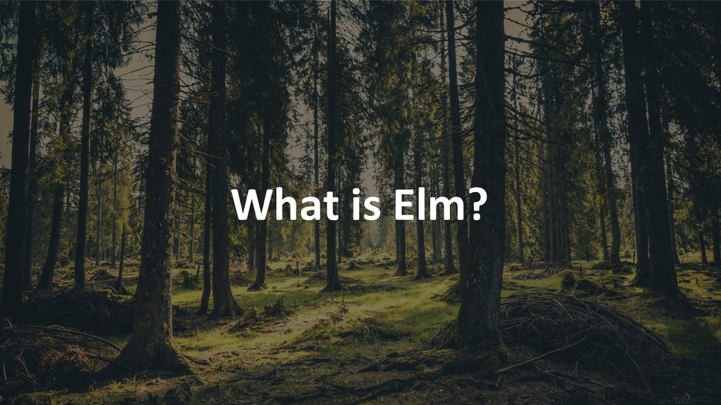 What is Elm?