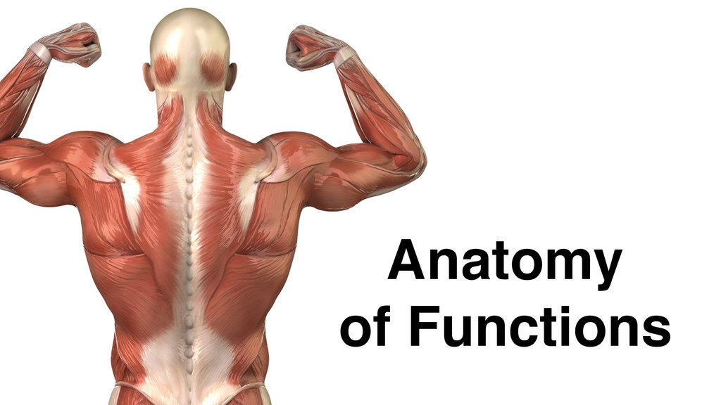 Anatomy! of Functions
