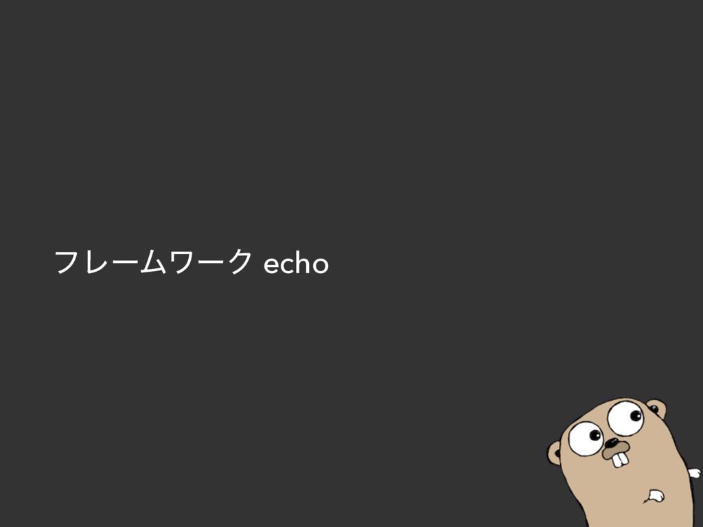 ϑϨʔϜϫʔΫ echo