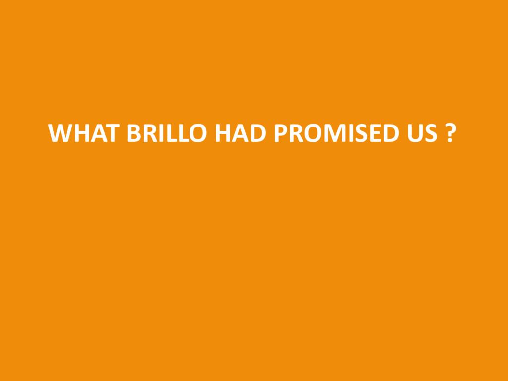 WHAT BRILLO HAD PROMISED US ?