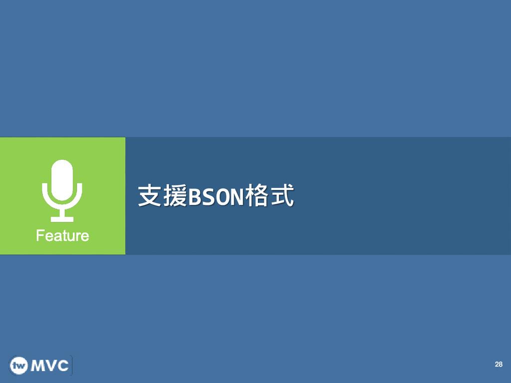 28 支援BSON格式