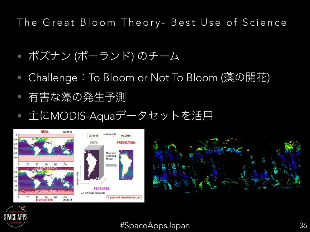 #SpaceAppsJapan T h e G re a t B l o o m T h e ...
