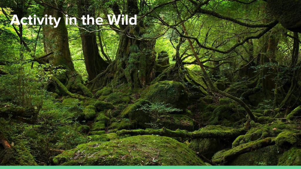 Activity in the Wild
