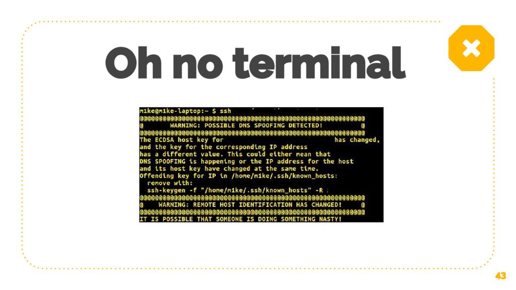 Oh no terminal 43