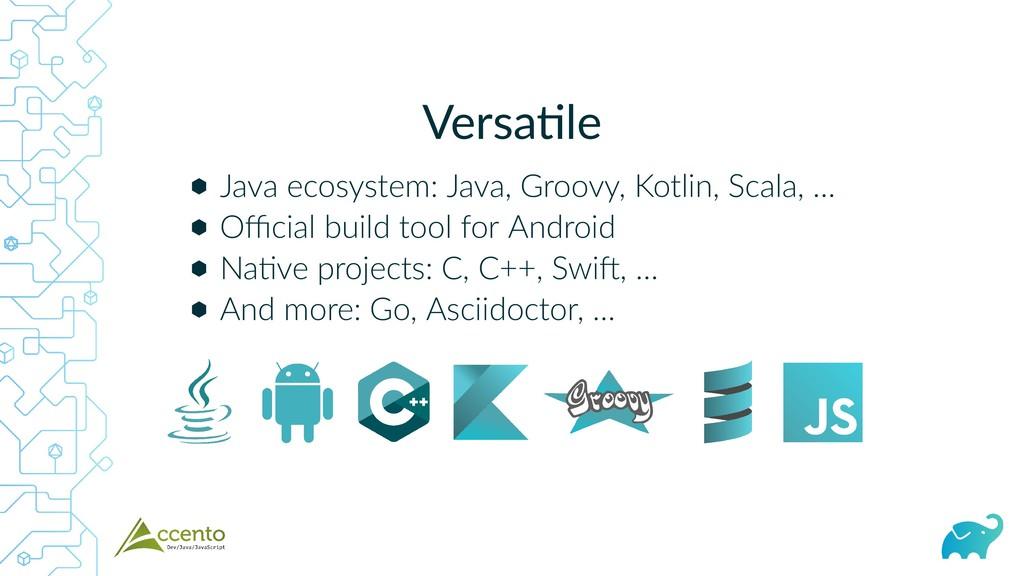 Versa le ⬢ ⬢ ⬢ ⬢ Java ecosystem: Java, Groovy, ...