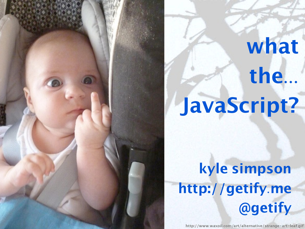 what the... JavaScript? kyle simpson http://get...