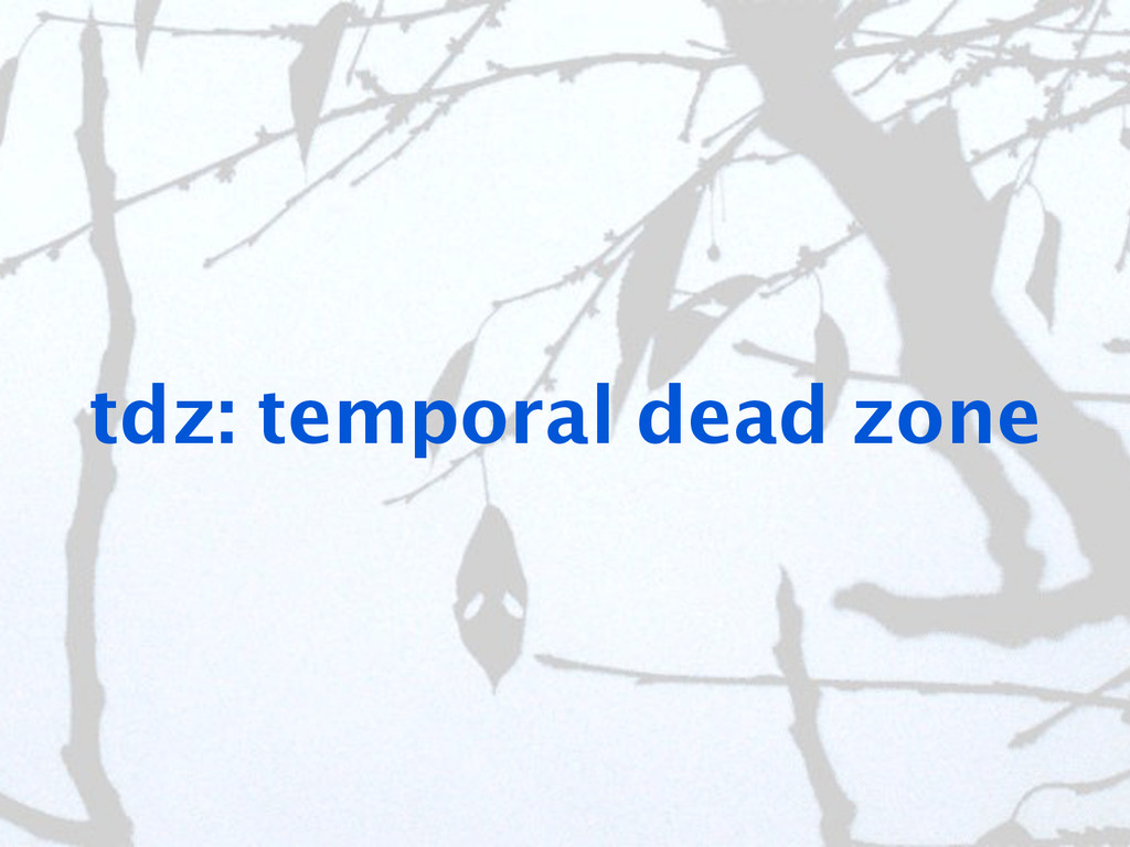 tdz: temporal dead zone