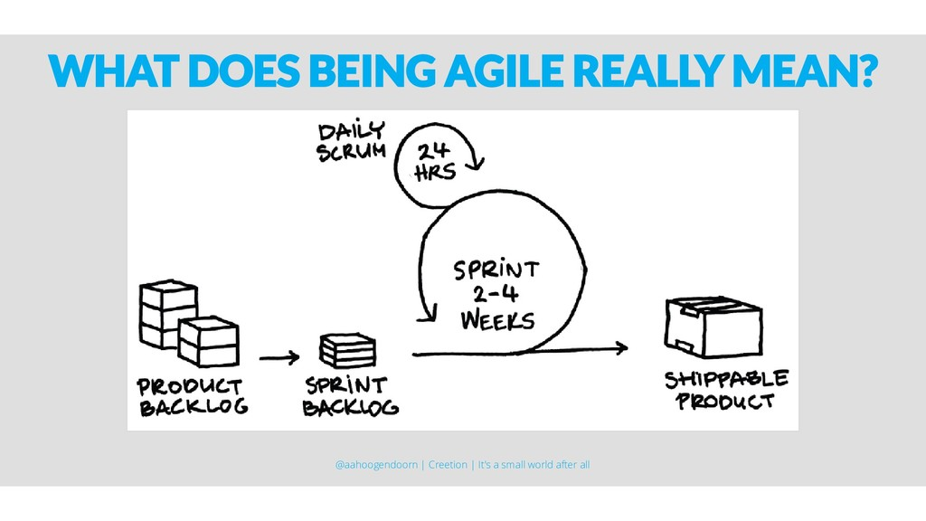 WHAT DOES BEING AGILE REALLY MEAN? @aahoogendoo...