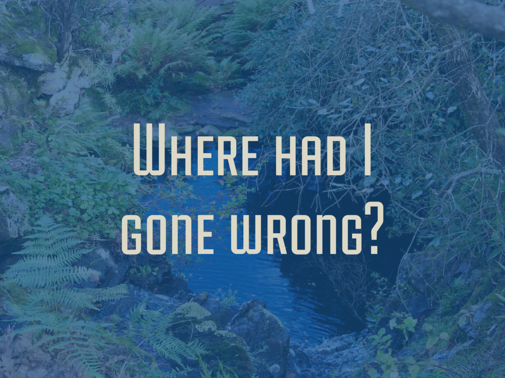 Where had I gone wrong?
