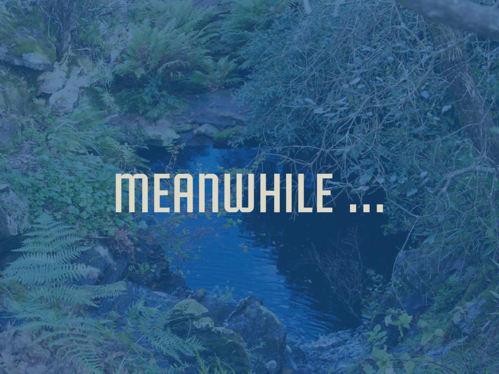 meanwhile …