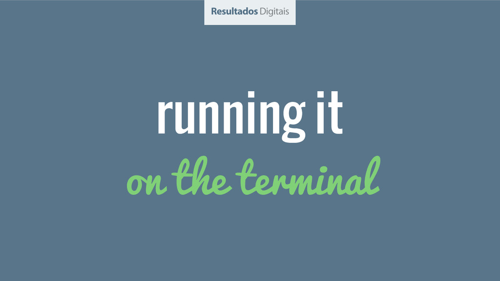 running it on the terminal