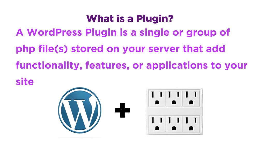 What is a Plugin? + A WordPress Plugin is a sin...