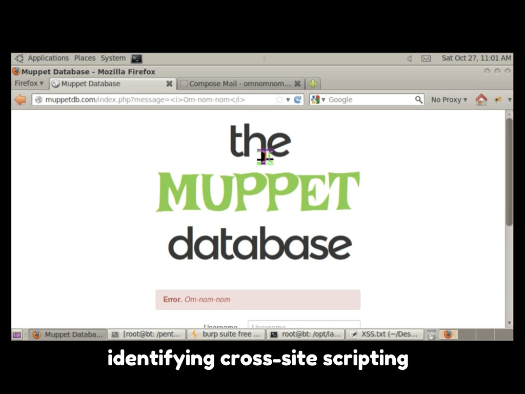identifying cross-site scripting