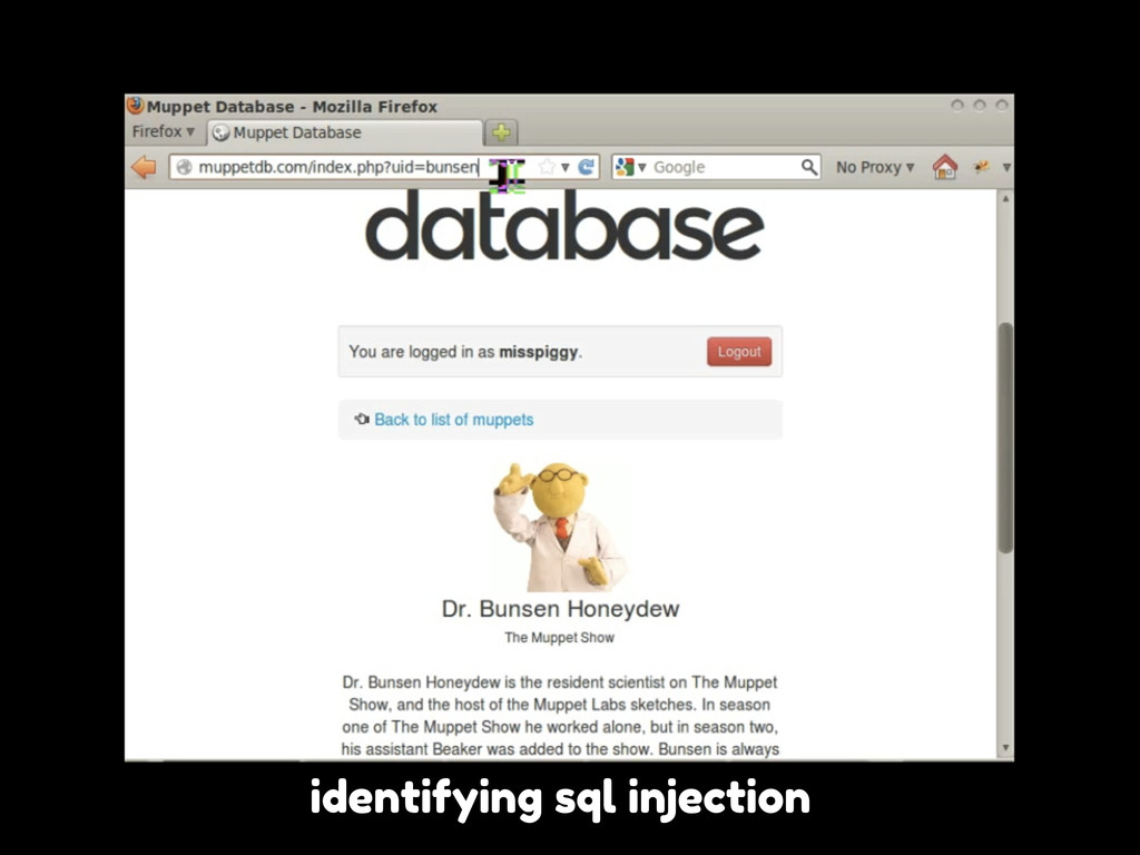 identifying sql injection