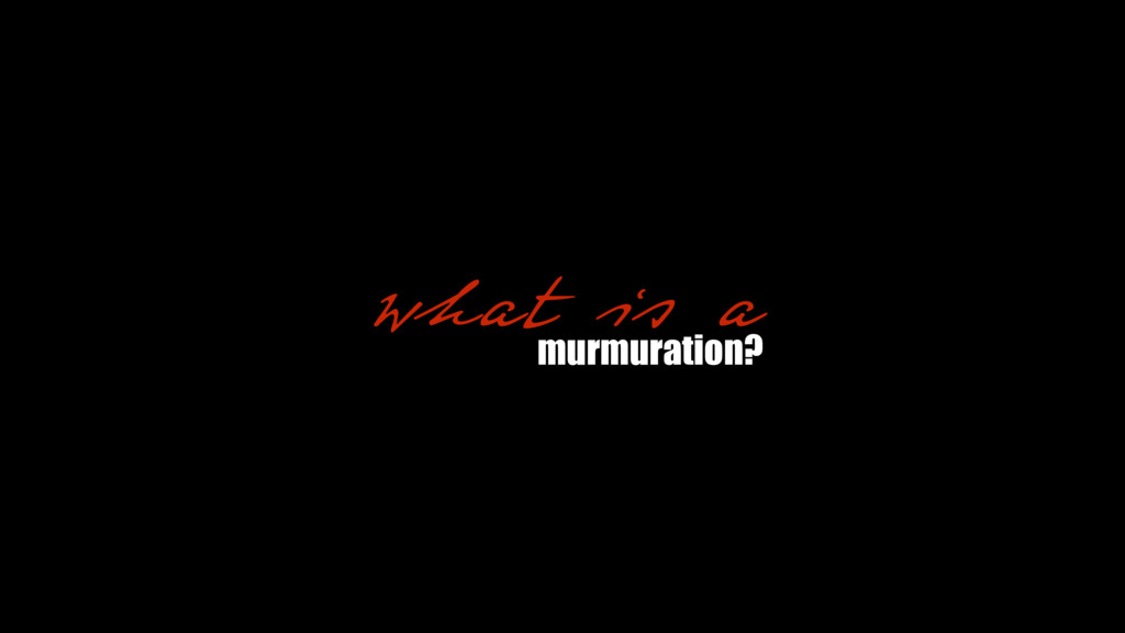 what is a murmuration?