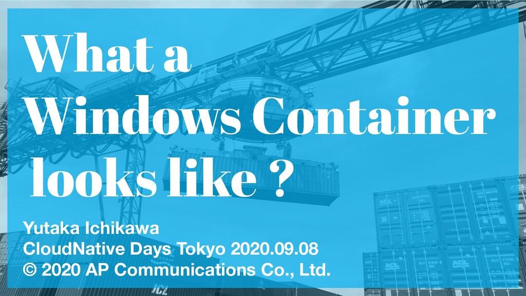 What a Windows Container looks like ? Yutaka Ic...