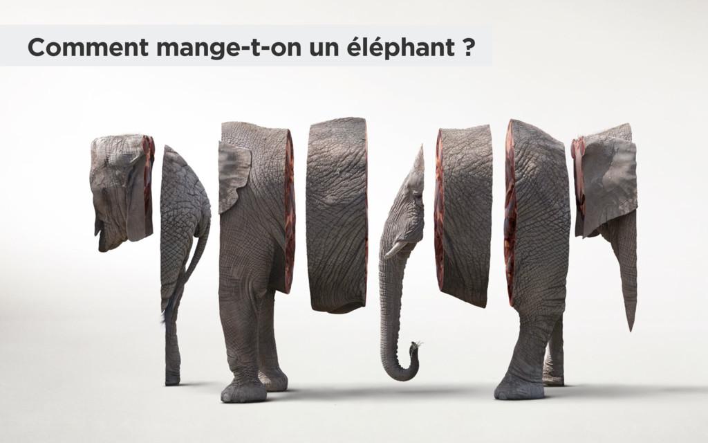 Comment mange-t-on un éléphant ?