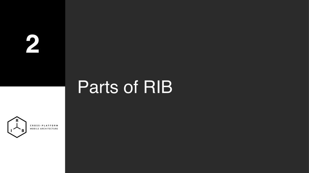 2 Parts of RIB