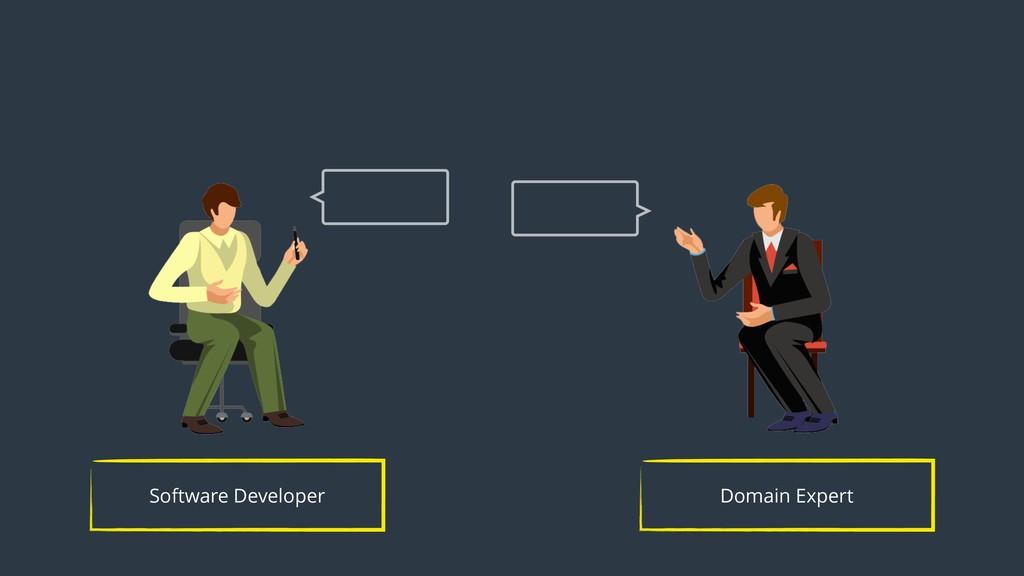 Domain Expert Software Developer