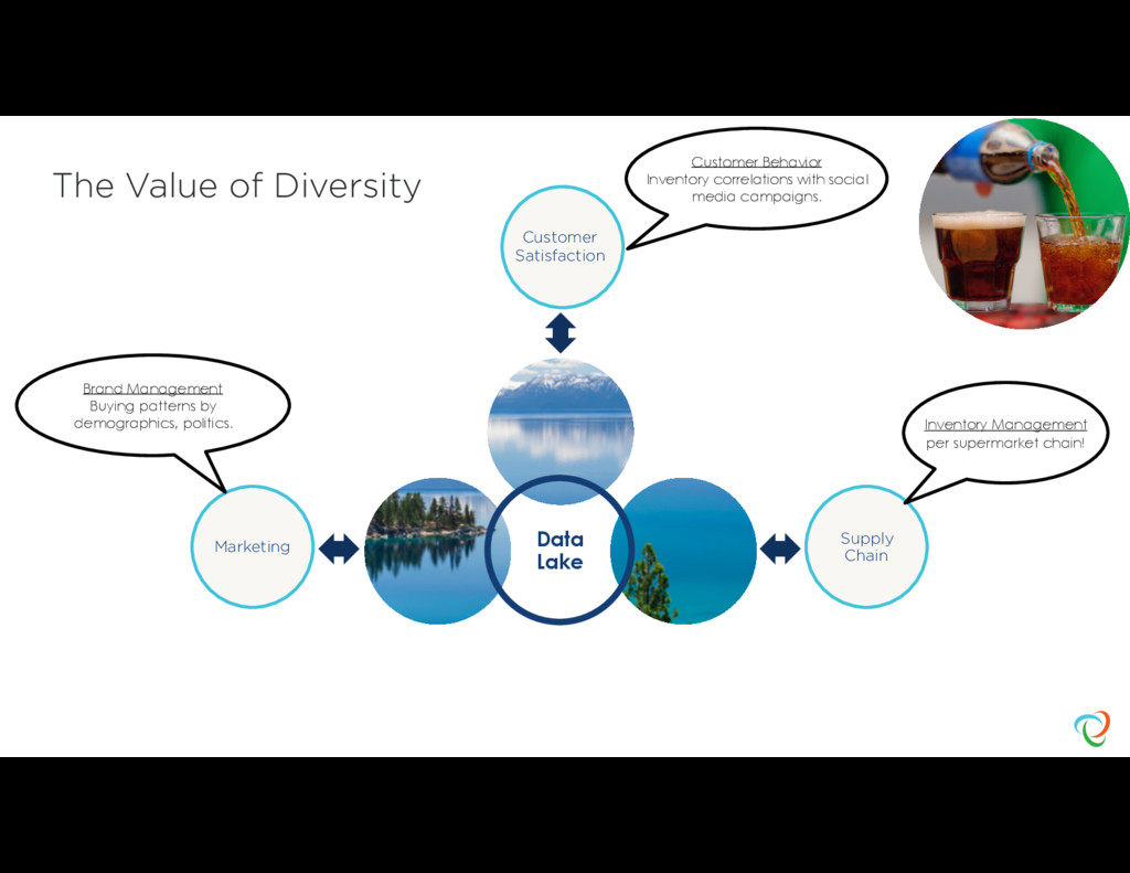 The Value of Diversity Data Lake Supply Chain M...