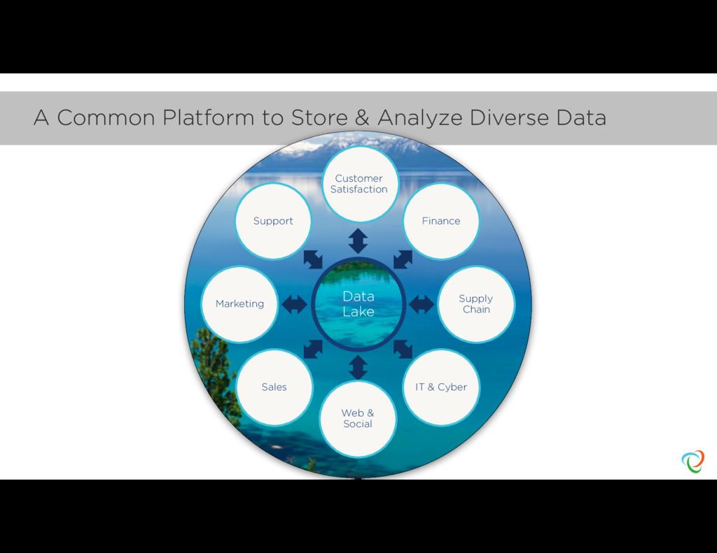 A Common Platform to Store & Analyze Diverse Da...