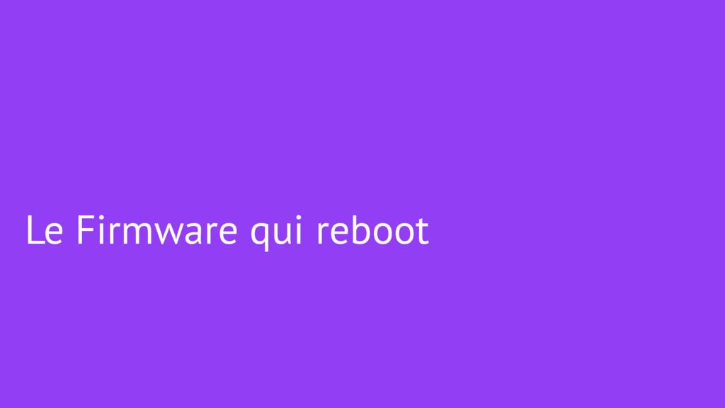 Le Firmware qui reboot