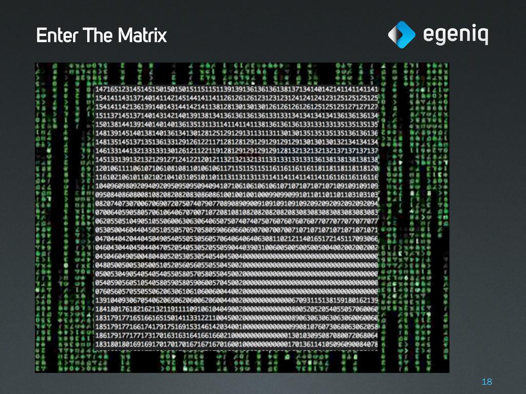 Enter The Matrix 18