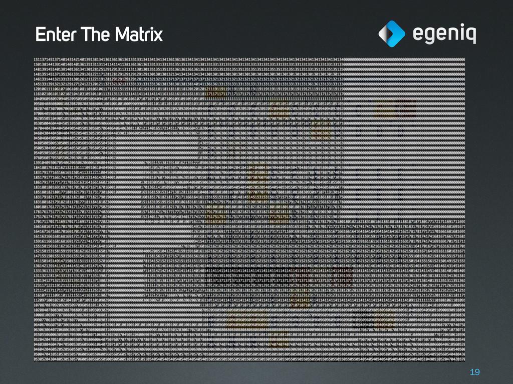Enter The Matrix 19