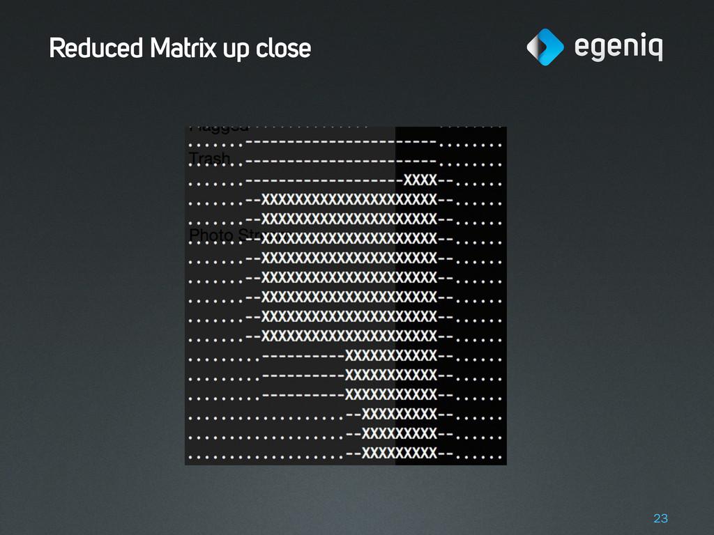 Reduced Matrix up close 23
