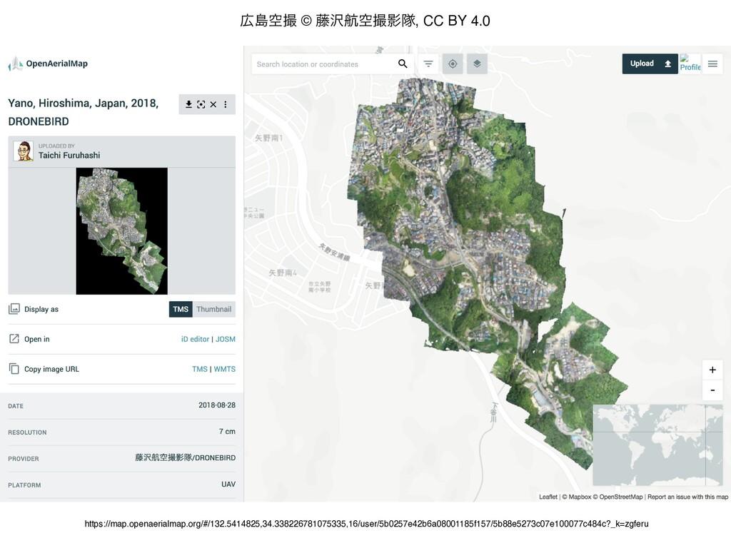 https://map.openaerialmap.org/#/132.5414825,34....