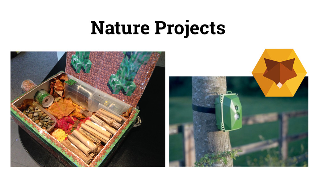 Nature Projects