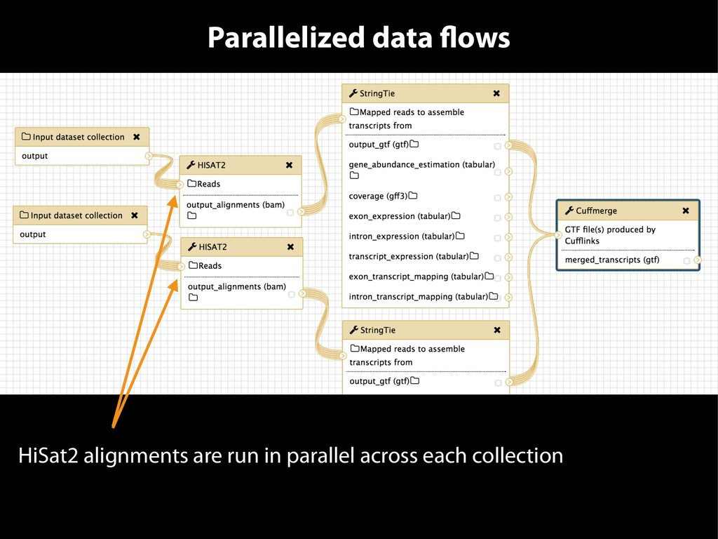 Parallelized data flows HiSat2 alignments are r...