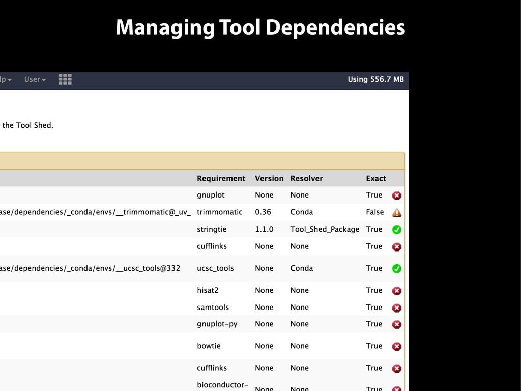 Managing Tool Dependencies