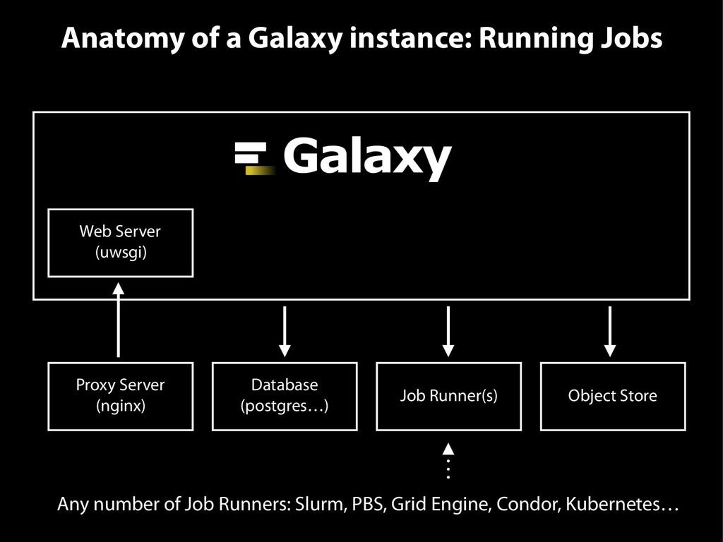 Anatomy of a Galaxy instance: Running Jobs Web ...