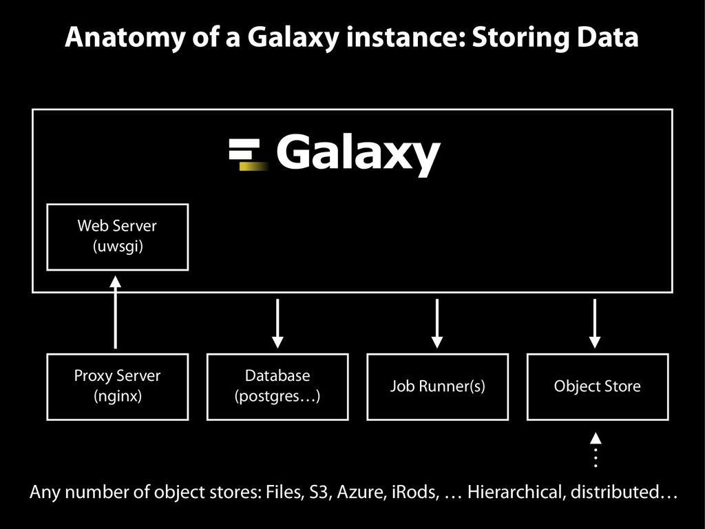 Anatomy of a Galaxy instance: Storing Data Web ...