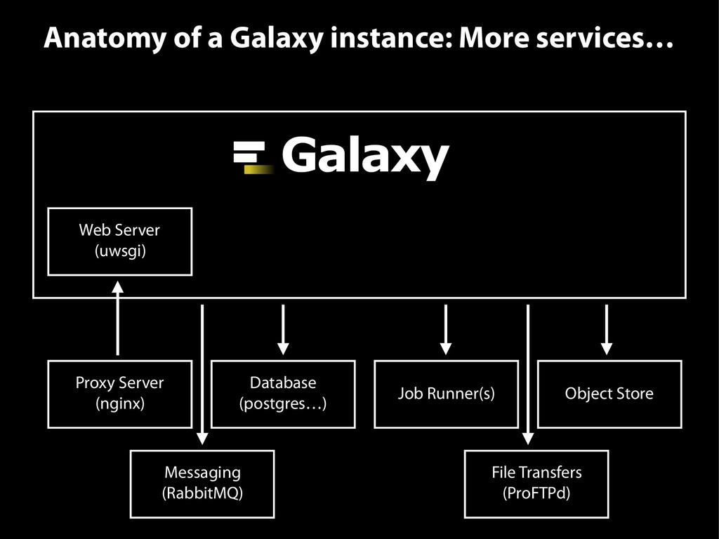 Anatomy of a Galaxy instance: More services… We...