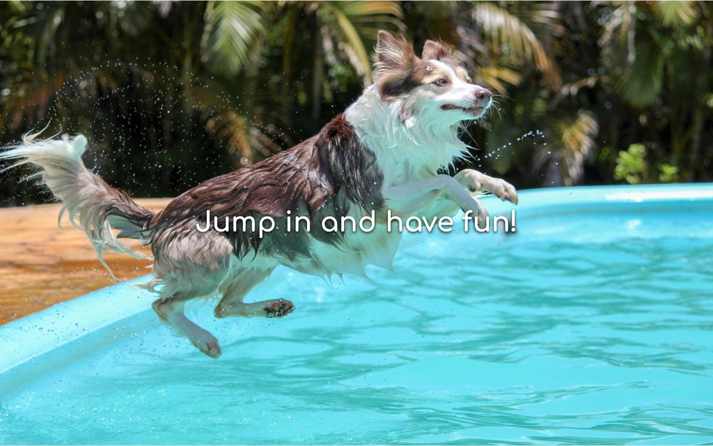 Jump in and have fun!