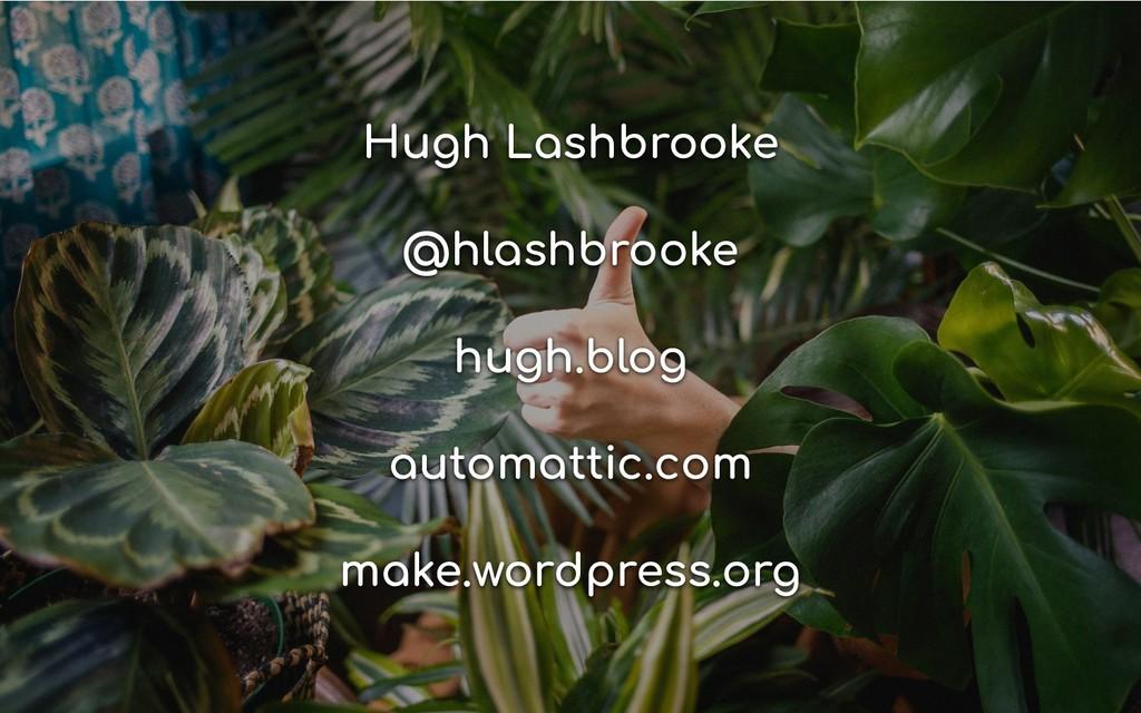 Hugh Lashbrooke @hlashbrooke hugh.blog automatt...