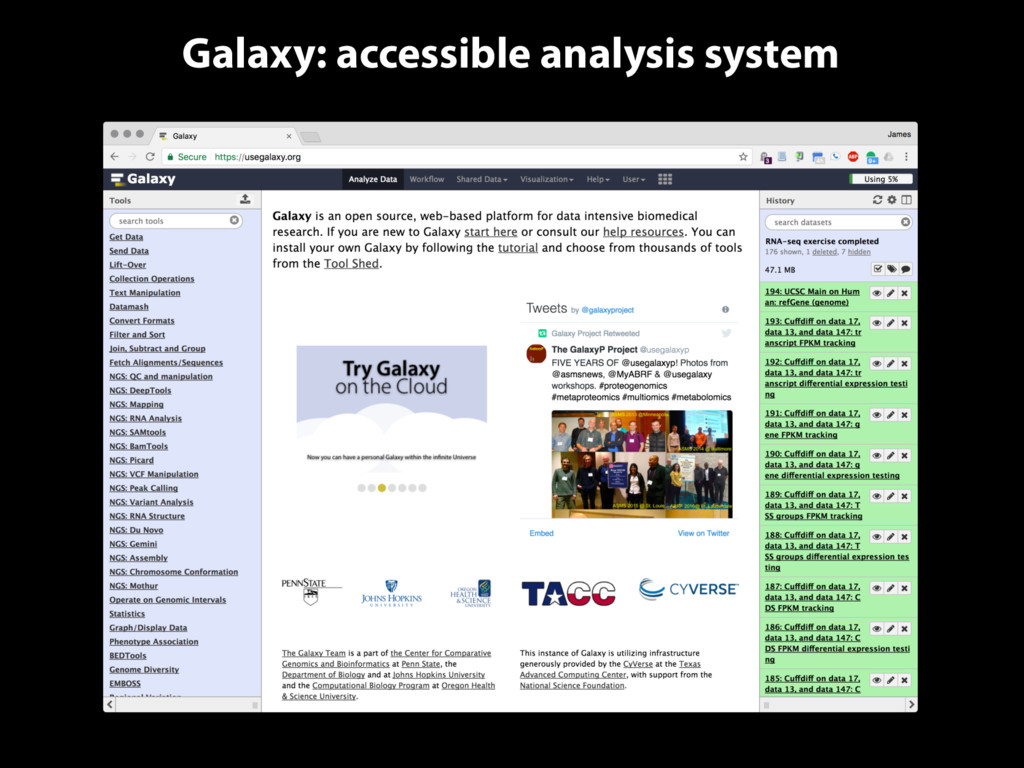 Galaxy: accessible analysis system