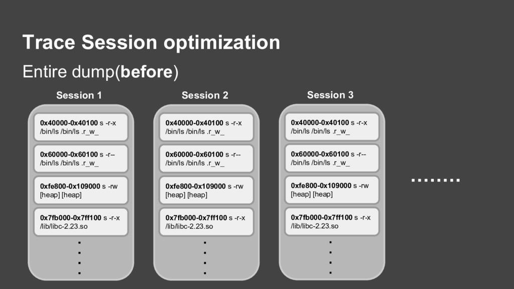 Trace Session optimization Entire dump(before) ...