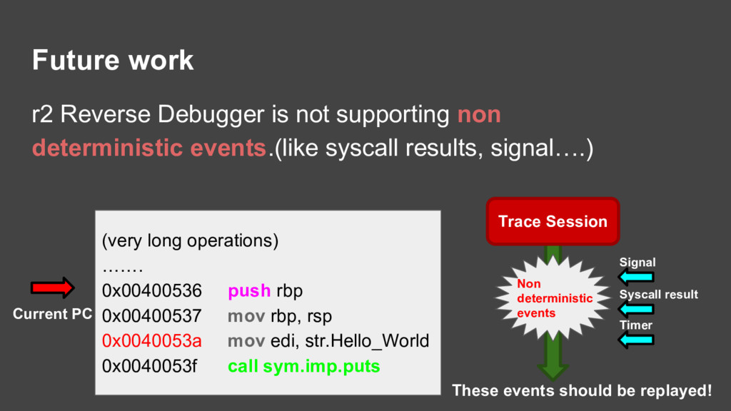 Future work r2 Reverse Debugger is not supporti...