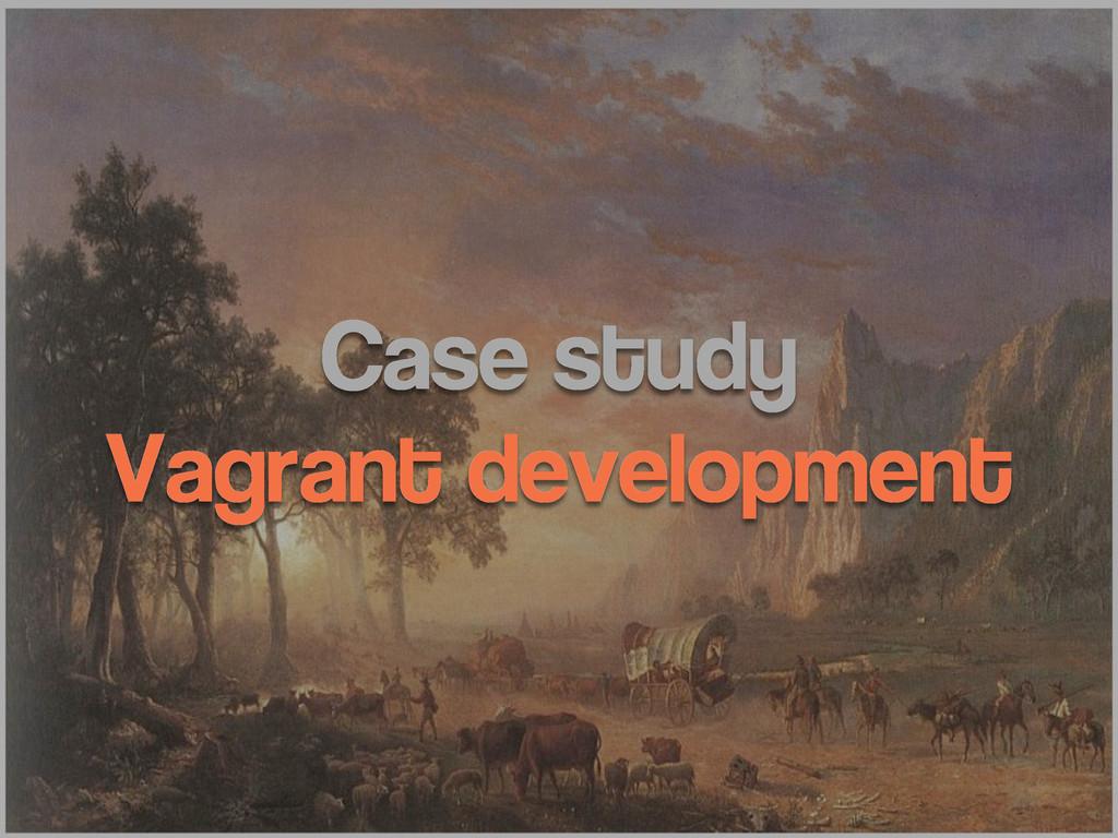 Case study Vagrant development