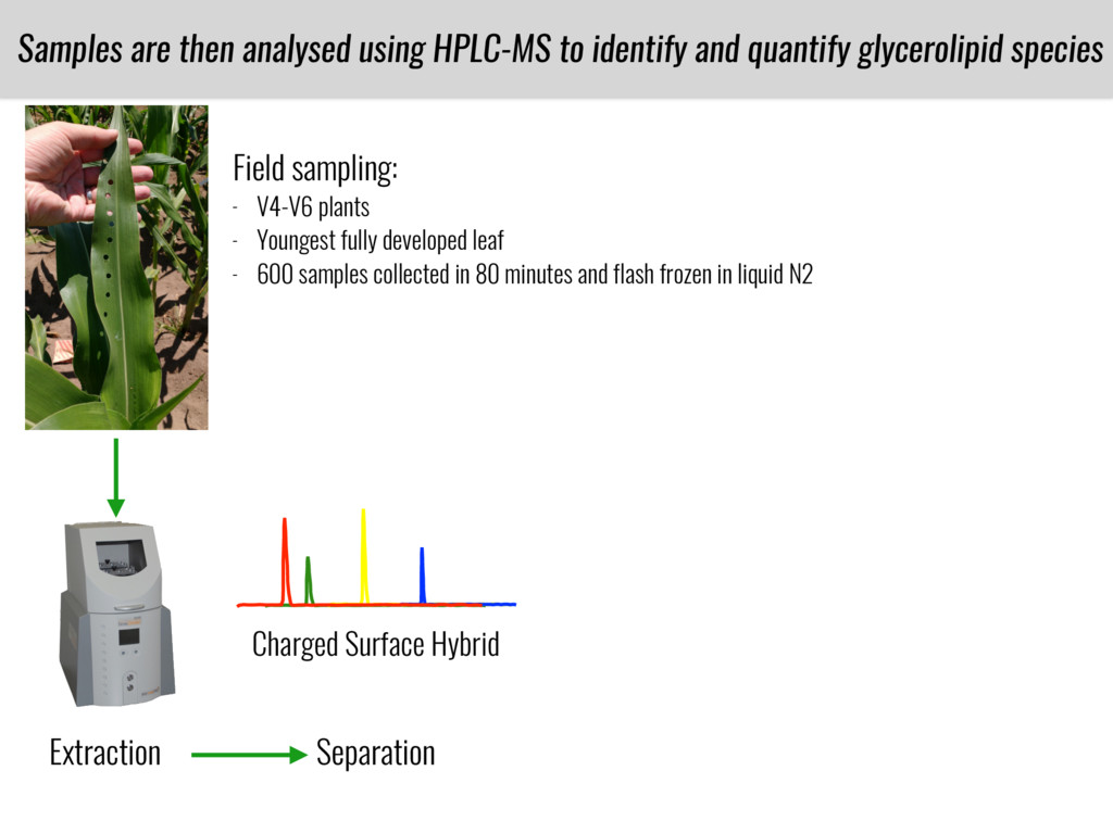 Separation Charged Surface Hybrid Samples are t...
