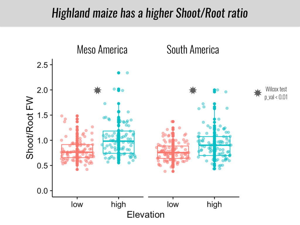 Highland maize has a higher Shoot/Root ratio PT...