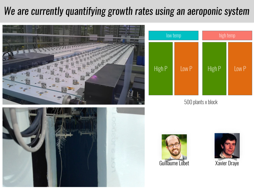 We are currently quantifying growth rates using...