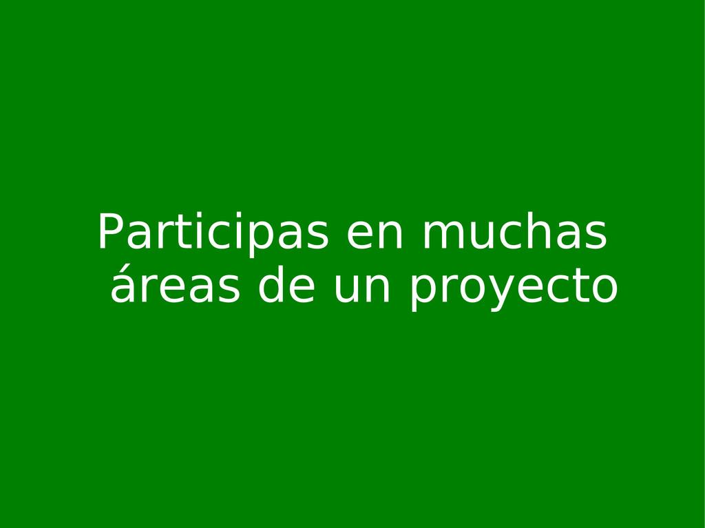 Participas en muchas áreas de un proyecto