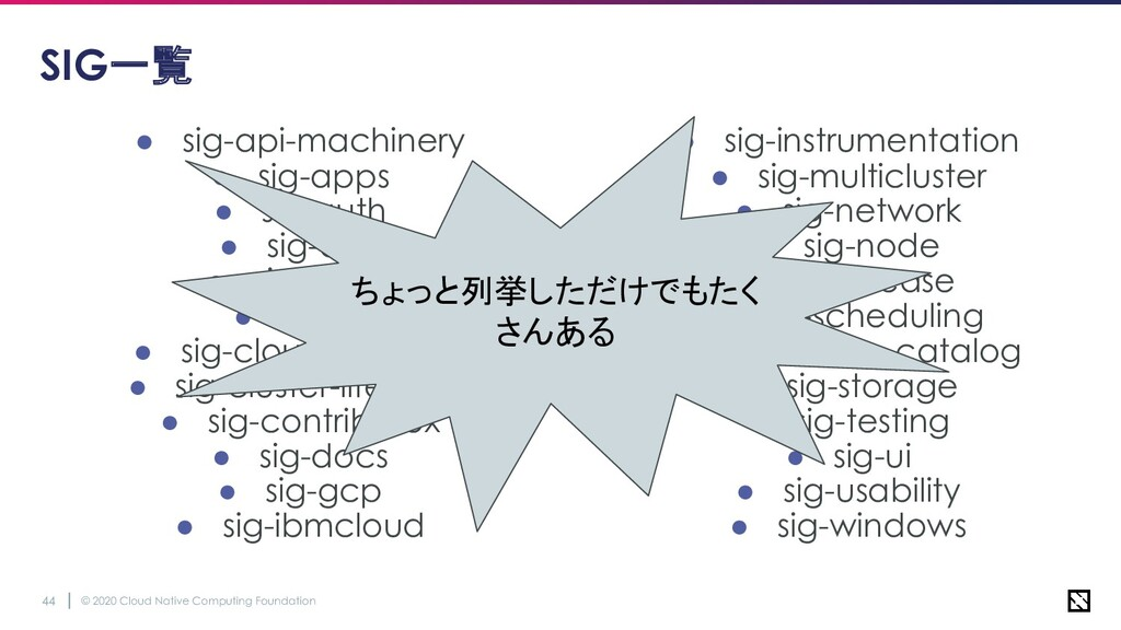 © 2020 Cloud Native Computing Foundation 44 SIG...