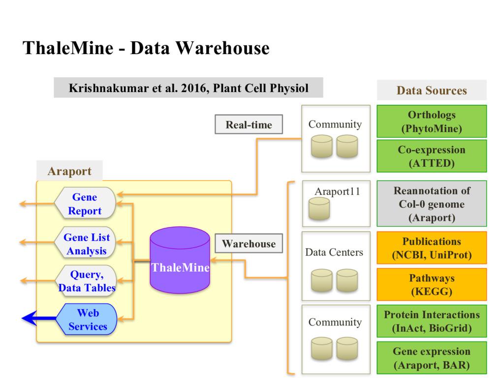 Community Orthologs (PhytoMine) Co-expression (...