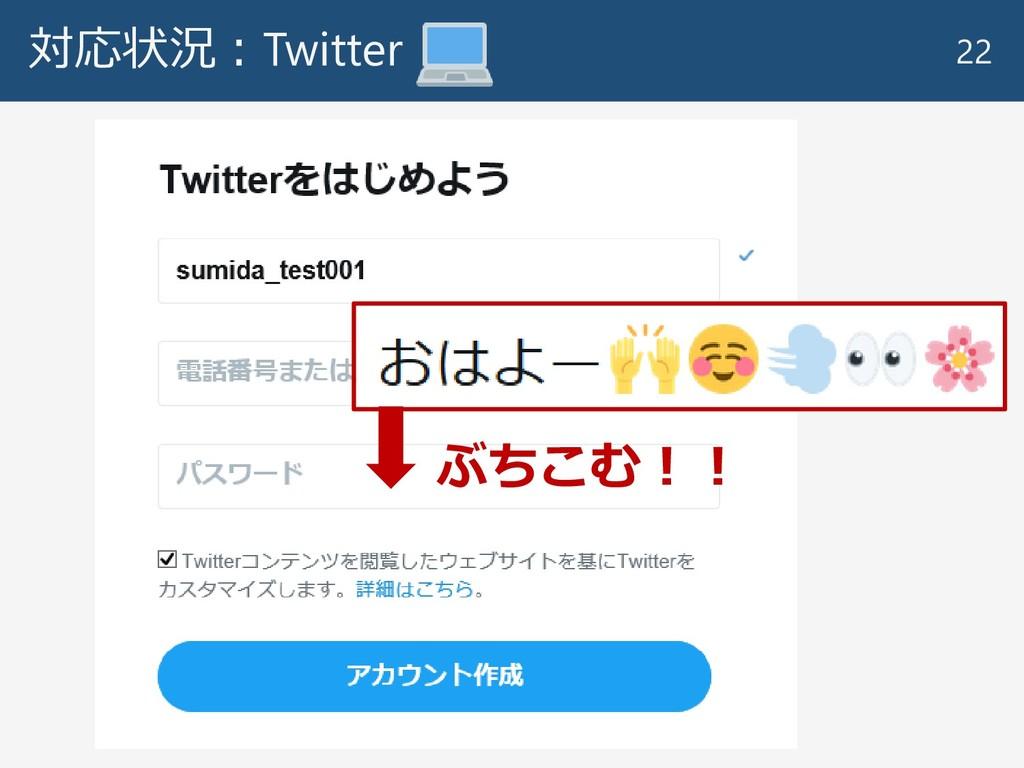 対応状況:Twitter 22 ぶちこむ!!