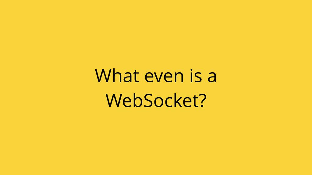 What even is a WebSocket?